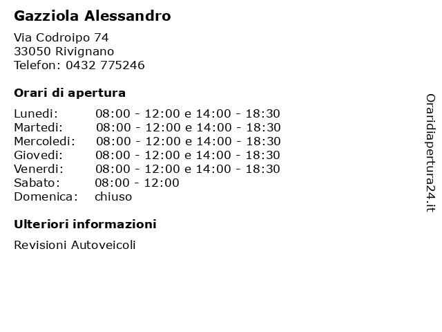 Gazziola Alessandro a Rivignano: indirizzo e orari di apertura