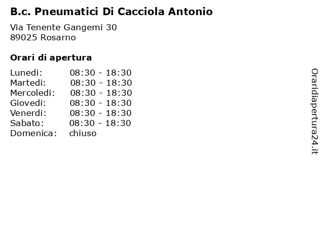 B.c. Pneumatici Di Cacciola Antonio a Rosarno: indirizzo e orari di apertura