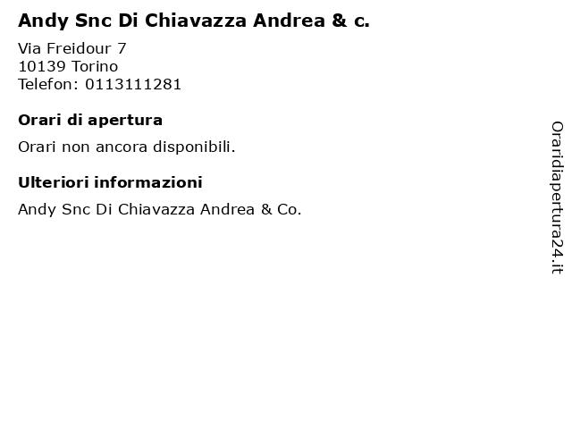 Andy Snc Di Chiavazza Andrea & c. a Torino: indirizzo e orari di apertura