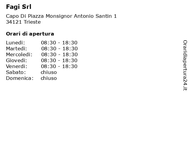 Fagi Srl a Trieste: indirizzo e orari di apertura