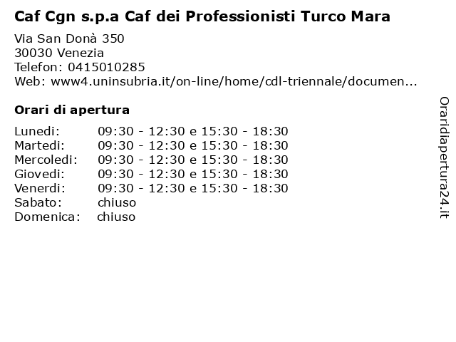 Caf Cgn s.p.a Caf dei Professionisti Turco Mara a Venezia: indirizzo e orari di apertura